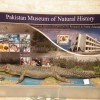 National Museum Islamabad