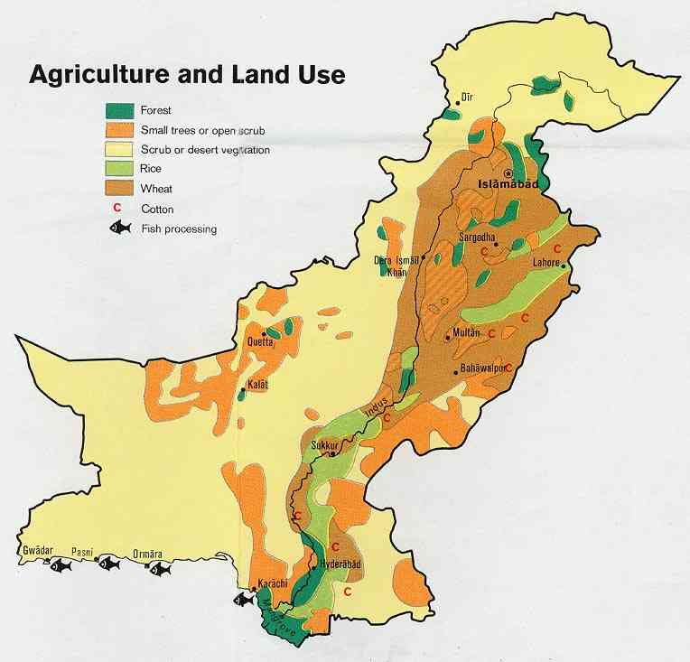agriculture and pakistan University of agriculture, faisalabad, pakistan email: naziagill@gmailcom khuda bakhsh assistant professor, institute of agricultural and resource economics food security in the context of climate change in pakistan 544.