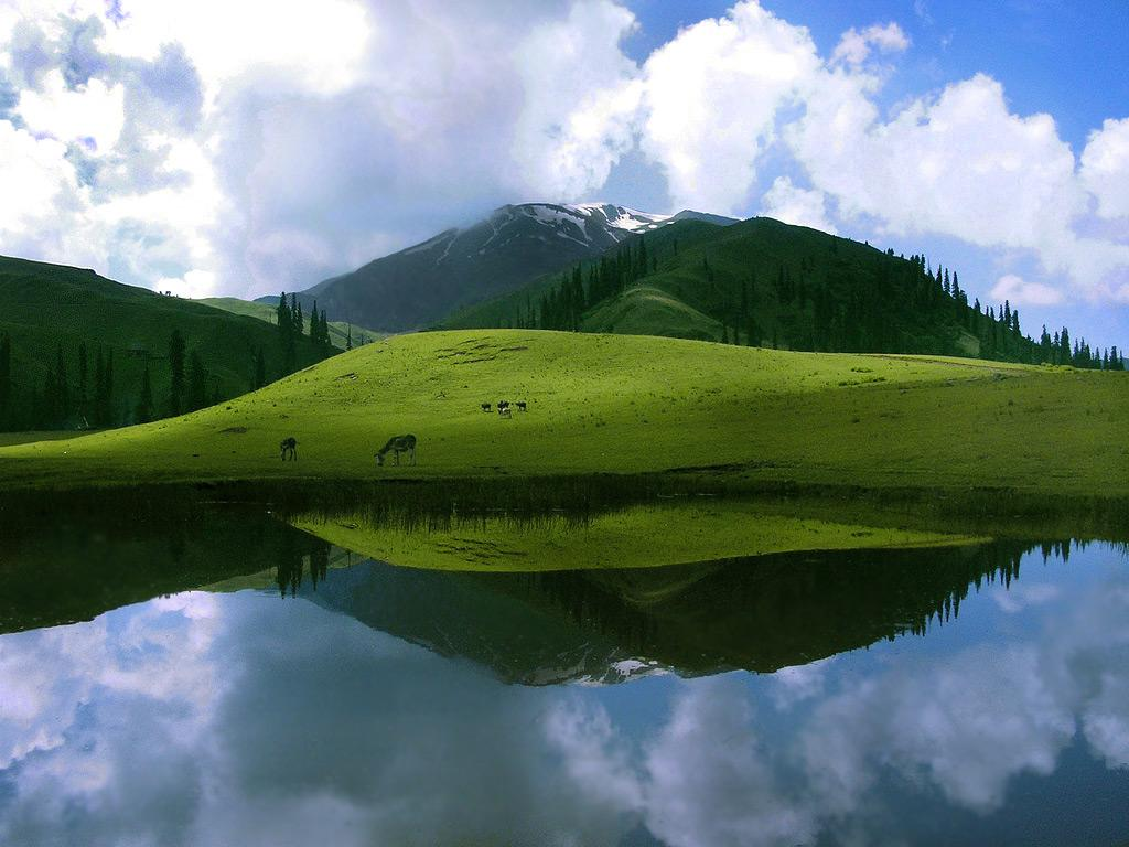 deosai national park river